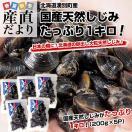 送料無料 北海道より産地直送 北海道湧別町産 大粒しじみ 約1キロ(200g×5袋)シジミ
