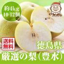 【安心のクール便】ジューシーな瀬戸内の恵 梨 なし 秀品 香川県産 約2kg(7〜8個)ギフト