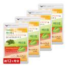 明日葉&コレウスフォルスコリ&白いんげん豆...