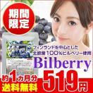 ビルベリー 約1ヵ月分 北欧産100% ブルーベリー よりアントシアニンが豊富なビルベリー使用 お試しセール限定価格 サプリ サプリメント