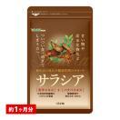 クーポンで198円 サラシア 約1ヵ月分 送...