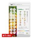 クーポンで198円 マルチビタミン&マルチミ...