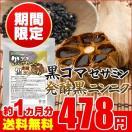 黒ゴマセサミン&発酵黒ニンニク 約1ヵ月分 お試しセール限定価格 サプリ サプリメント