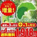 イチョウ葉エキス 約4ヵ月分 サプリ サプリメント
