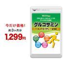 2型コラーゲン配合グルコサミン コンドロイチン MSM 約3ヵ月分 ウルトラタイムセール サプリ サプリメント