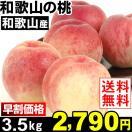 桃  和歌山産 和歌山の桃 3.5kg 送料無料 【早割セール】