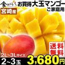 マンゴー お買得 宮崎産 ご家庭用マンゴー 2~3玉 1組 送料無料 2L~3Lサイズ 冷蔵 アップルマンゴー