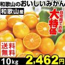 みかん ミカン 和歌山産 和歌山のおいしいみかん 10kg1箱 送料無料 ご家庭用 特別版