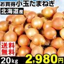 玉ねぎ 北海道産 お買得 小玉たまねぎ 20kg 1箱 送料無料 小玉サイズ 特別版