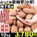 安納芋  種子島産 ぶっこみ安納芋 小芋 10kg 1組 送料無料 無選別 特別版