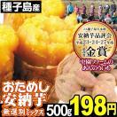 安納芋 種子島産 おためし安納芋ミックス 500g1組 無選別 あんのういも 蜜芋【20セットまで同梱発送OK】