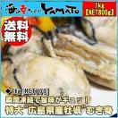 広島産 牡蠣のむき身1kg[NET800g] 3Lサイズ厳選 かき カキ 貝 贈答 父の日
