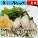 広島県産 浜蒸し牡蠣 正味1kg入り 旨味を閉じ込めるスチーム加熱 解凍するだけで召し上がれます かき カキ