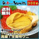 天然生ウニ 100g×3パック 完全無添加 ミョウバン不使用で更に美味しくトロッと旨い うに 雲丹