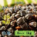 冷凍 宍道湖産ヤマトシジミ Sサイズ 1kg