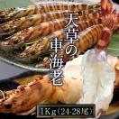 車海老 活【大L】天草 車えび 1kg 熊本県産...