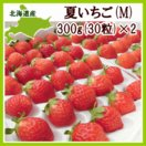 夏いちご M(300g・30粒前後)×2トレー(計600g) /北海道産 出荷期間:6〜12月
