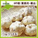 ユリ根 1kg (業務用 優品 L〜3L混・5〜8玉) /北海道産 出荷時期 10〜12月