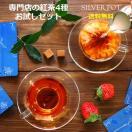 紅茶(ティーバッグ)お試しセット The Trial Set【送料無料】
