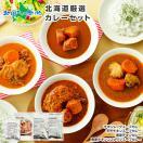スープカレー レトルト 北海道 4食セット 業務用 チキンレッグ 南家 天竺 ココナッツ グルメ お取り寄せ お中元