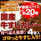 牛すじカレー4パック入り 100%国産牛すじ...