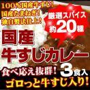 牛すじカレー3パック入 ポイント消化 100...