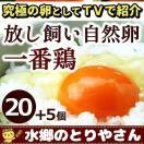 鶏卵 放し飼い自然卵 一番鶏 25個詰 安心卵 / 冷蔵 限定配送 /冷凍限定商品とは同梱できません 別途送料がかかります