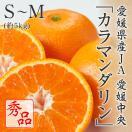カラマンダリン 愛媛県産 JAえひめ中央 秀品 S〜M 5kg 4月中旬より発送 母の日ギフト