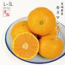 カラマンダリン 愛媛県産 JAえひめ中央 秀品 L〜2L 5kg 4月中旬より発送 母の日ギフト