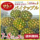 パイナップル 業務用 訳あり 小玉 7〜8玉 ...
