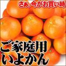 タイムセール♪ご家庭用伊予柑 2kg×1箱【訳あり】【送料無料】