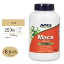 (お徳用サイズ)マカ 500mg 250粒 4~8ヶ月分!  NOW Foods(ナウフーズ)