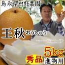 梨 なし 中野農園 王秋梨 おうしゅう 5kgセ...