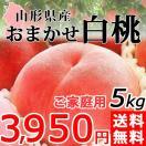 桃 おまかせ 白桃 5kg 山形県産 送料無料 訳あり ご家庭用 もも 産地直送