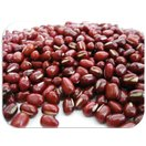 豆力 契約栽培十勝産 小豆 10kg