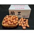 """こだわりたまご""""蘭王""""Mサイズ 10kg【127個~142個+破損保障30個】 鮮やかな濃いオレンジ色の卵黄色 卵 たまご 新鮮"""