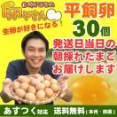 平飼い卵 30個 あすつく 純国産鶏 産地直送 朝採れ 朝どり 信州産 本州四国 送料無料 卵かけご飯 お菓子作り