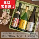 日本酒 純米吟醸・純米大吟醸 飲み比べセットTG-3B 京都伏見ギフト誕生日お祝い歓送迎会退職結婚祝い入社お花見母の日父の日