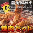 亀山社中 まんぞく 焼肉セット(華咲きハラミ・やわらかカルビ・ひとくちモモ・キムチ)(食べ比べ BBQ バーベキュー ギフトに最適 お中元 お歳暮)