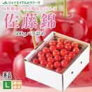 さくらんぼ 佐藤錦 ギフト L玉 秀品 500g 山形県産 バラパック c6