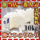 一部地域 送料無料 当店1番人気 精白米 29年産 九州 熊本県産 ヒノヒカリ 10kg ひのひかり 他の商品との同梱不可、単独発送