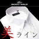 BODYWILDワイシャツGUNZEスリムカッターシャツYシャツクールビズ白ホワイトブルーストライプ半袖ボタンダウン形態安定イージーケア紳士用