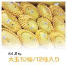 タイ産 ゴールデンマンゴー 約4.5kg 大玉10個/12個入り(ナムドクマイ種)