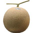 メロン 静岡県産「クラウンメロン」簡易梱包 小玉1玉 等級:白以上 約1kg ※常温・送料無料【同梱不可】◯
