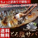 ≪送料無料≫ちょいキズ ノルウェー産 とろ塩サバ 1kg(6枚~10枚前後) ※冷凍 sea☆