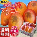 《送料無料》訳有り『沖縄産マンゴー』 大ボリュームの約1.5kg(3~6玉)frt ○