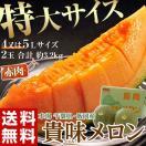 《送料無料》 千葉県・飯岡産 「貴味メロン(赤肉)」 4~5L×2玉 約3.2kg frt ☆