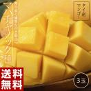 《送料無料》タイ産マンゴー「マハチャノック」 約300g×2玉 合計約600g frt ◯
