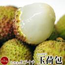 台湾産 生ライチ 玉荷包 約1kg ※冷蔵 同梱不可 frt ☆