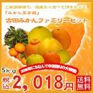 (f 05)吉田 みかん 詰め合わせファミリーセ...